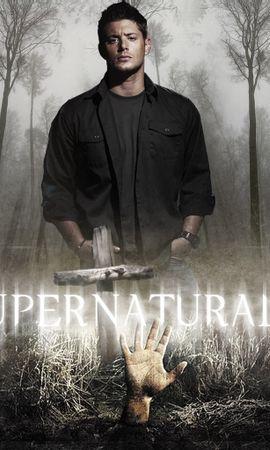 10749 скачать обои Кино, Люди, Актеры, Мужчины, Сверхъестественное (Supernatural), Дженсен Экклз (Jensen Ackles) - заставки и картинки бесплатно