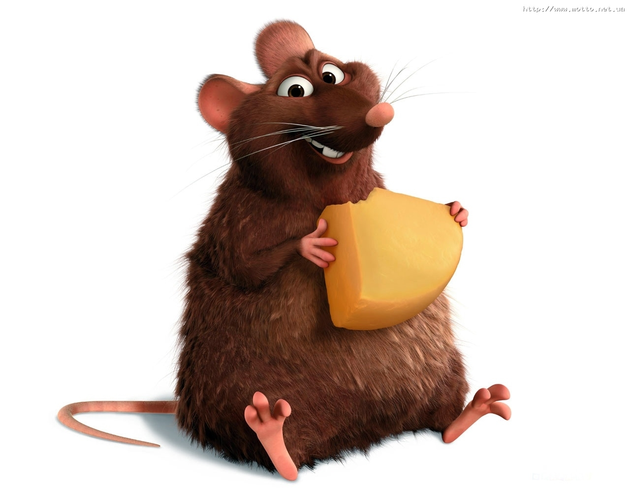 2465 Screensavers and Wallpapers Ratatouille for phone. Download Cartoon, Animals, Mice, Ratatouille pictures for free