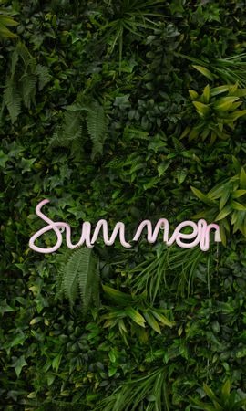 126734 download wallpaper Words, Summer, Vegetation, Inscription, Plants, Greens screensavers and pictures for free