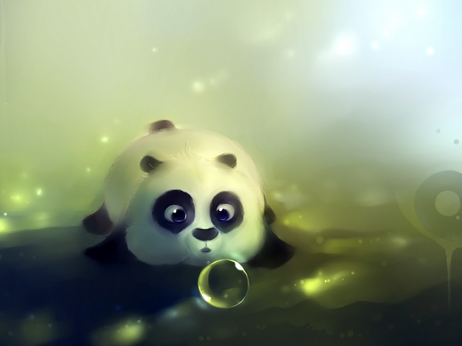 19681 download wallpaper Animals, Pictures, Pandas screensavers and pictures for free