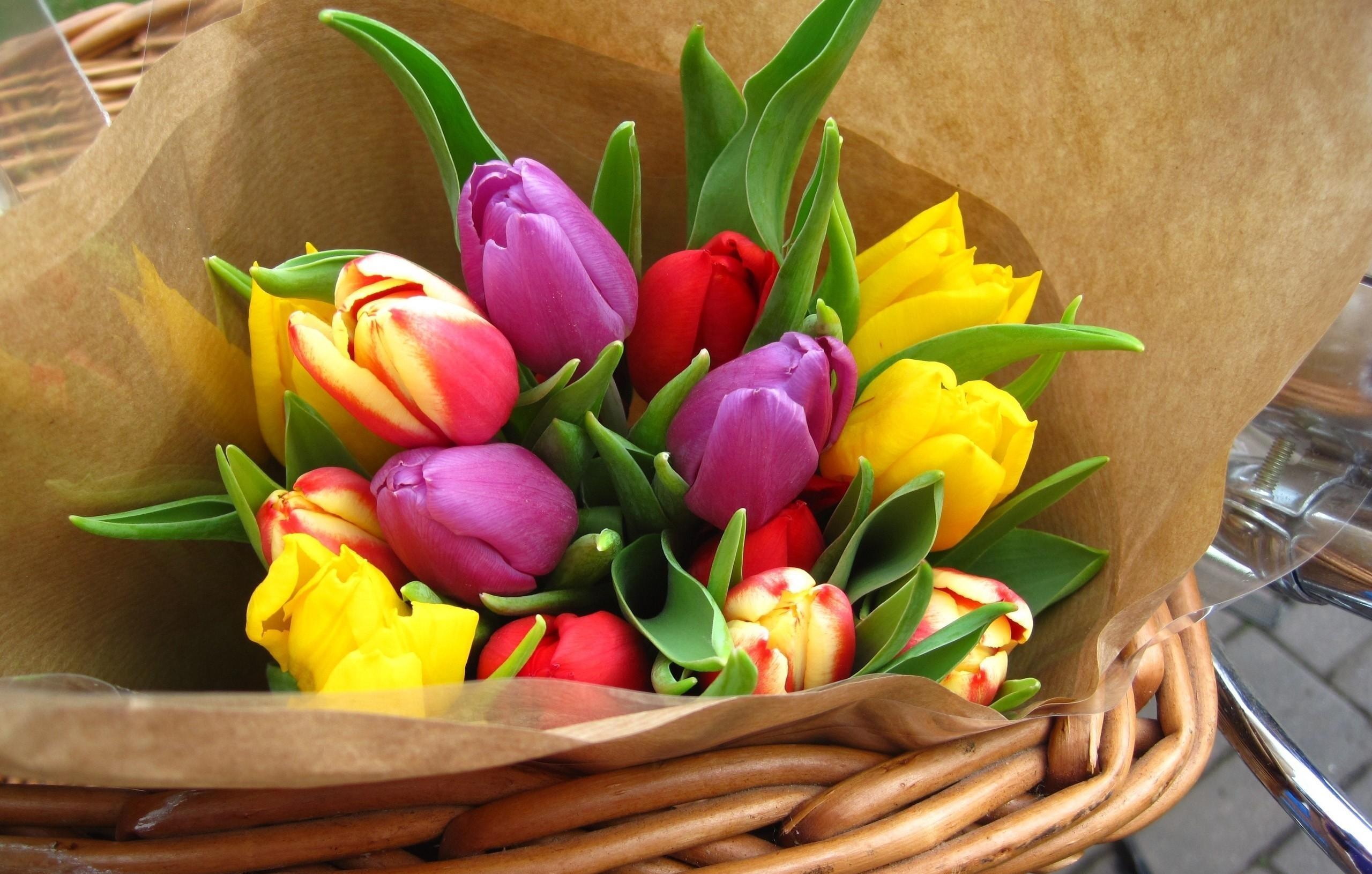 150464 скачать обои Тюльпаны, Букет, Цветы, Яркие, Бумага - заставки и картинки бесплатно