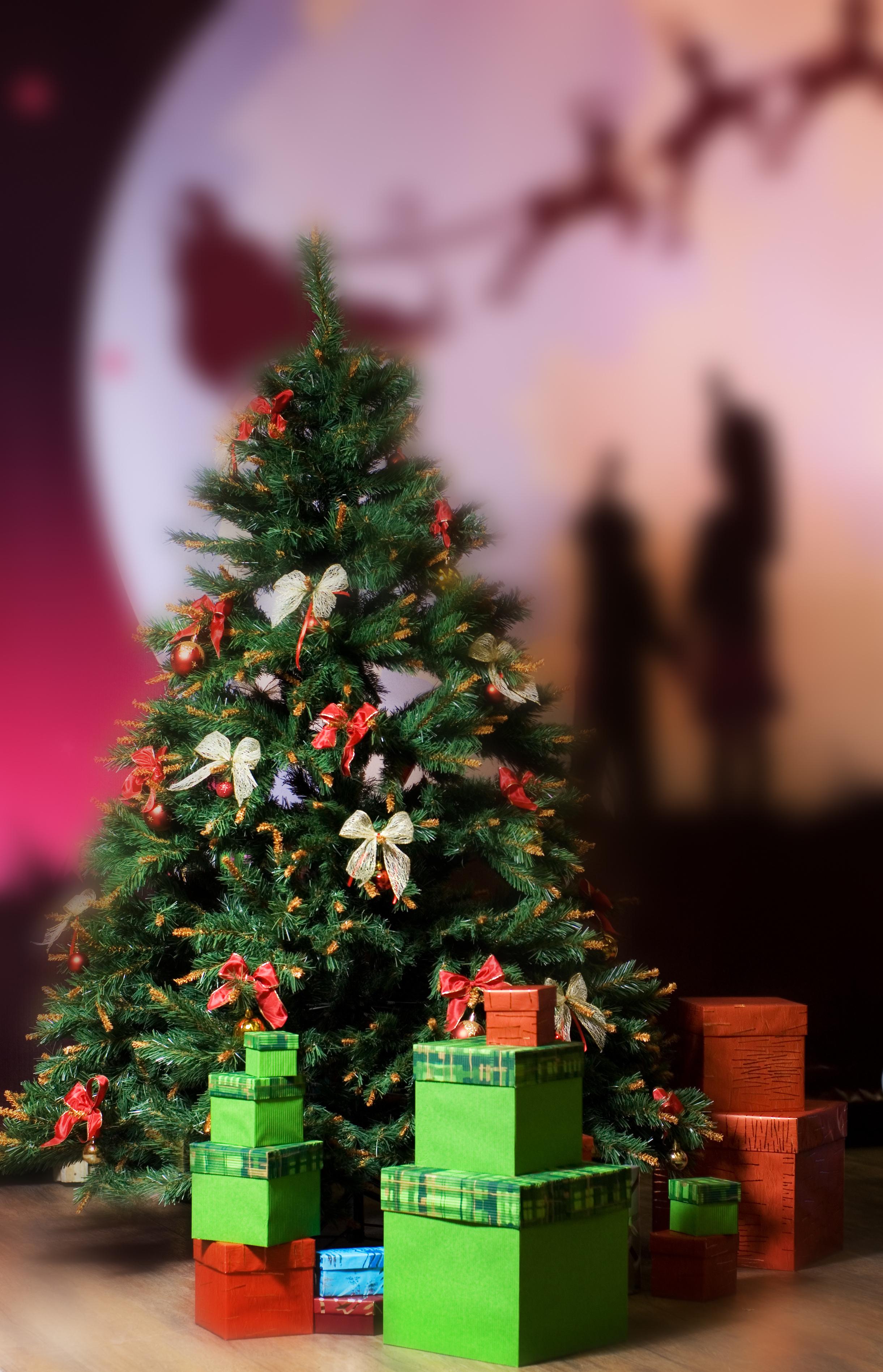 14040 скачать обои Новый Год (New Year), Праздники, Елки, Рождество (Christmas, Xmas) - заставки и картинки бесплатно