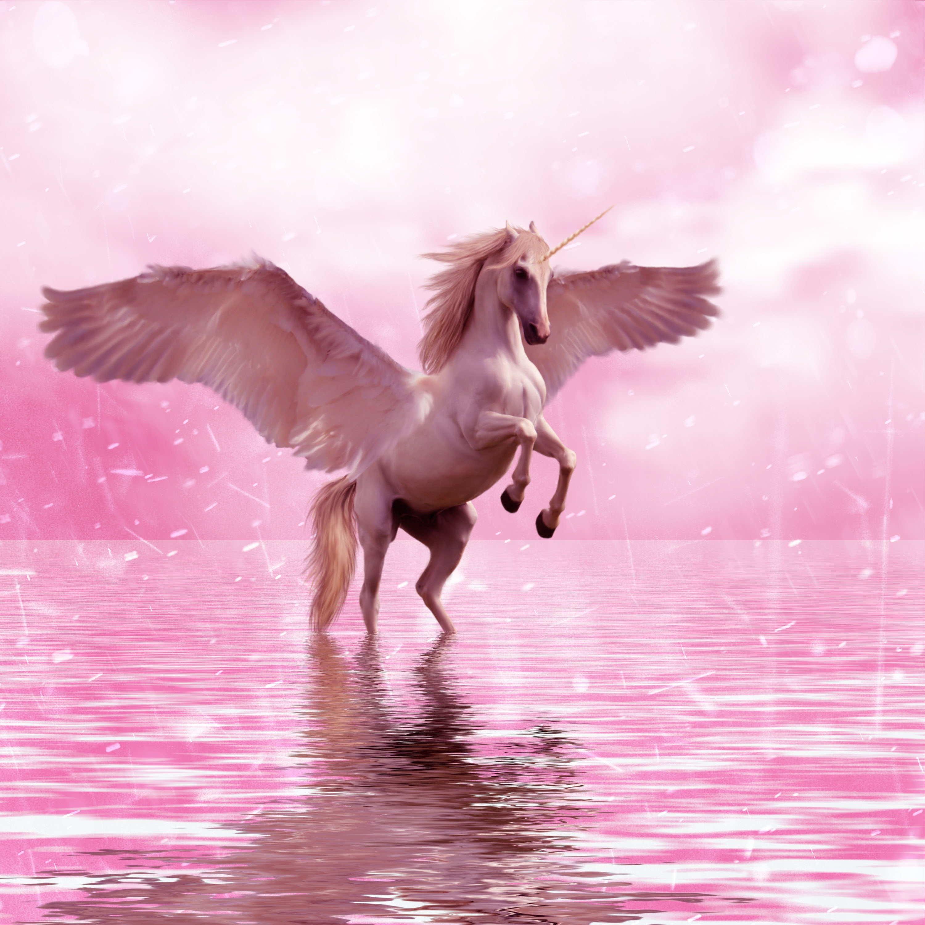83534 download wallpaper Fantasy, Unicorn, Wings, Horse screensavers and pictures for free