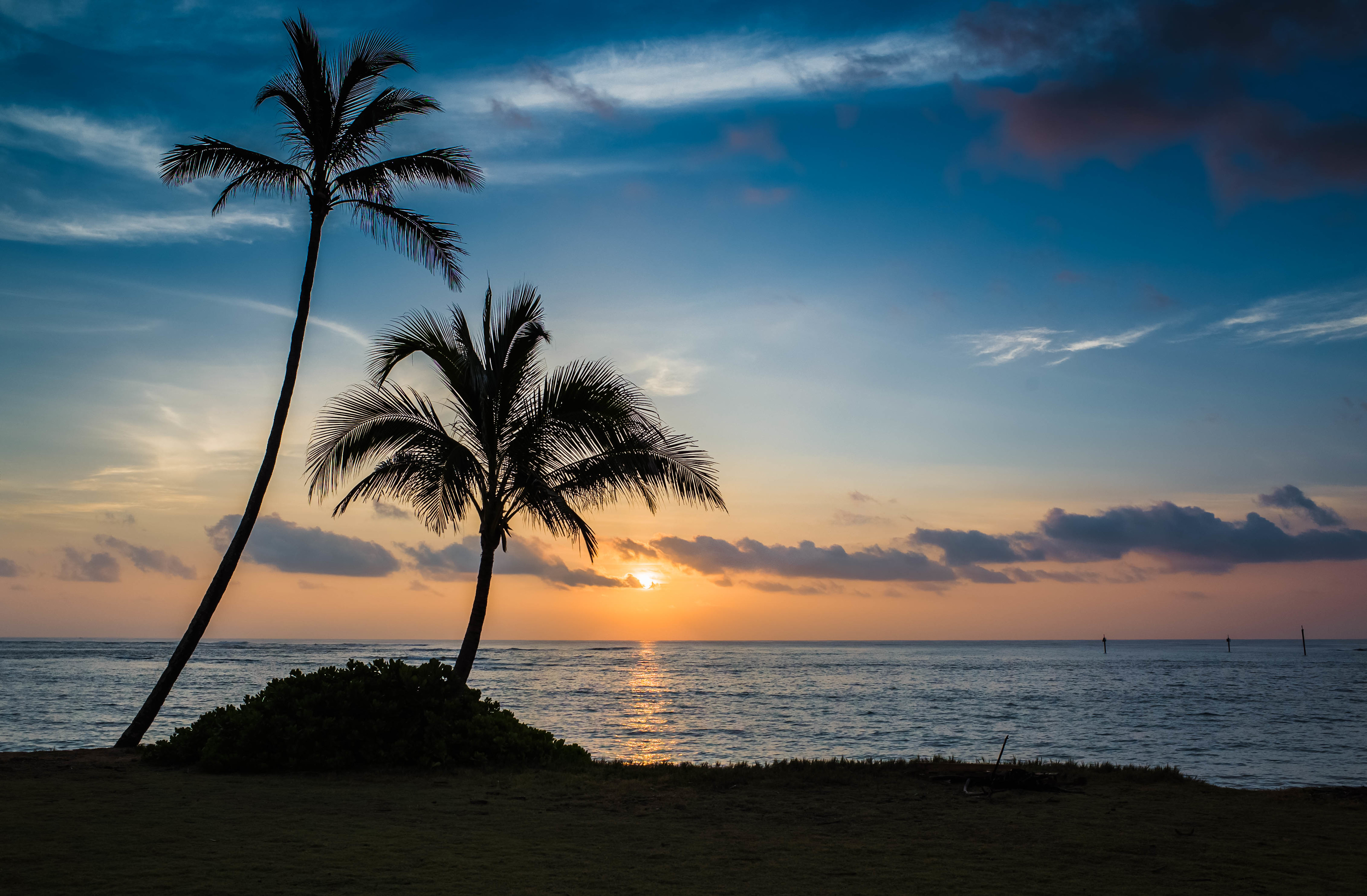 64536 download wallpaper Nature, Beach, Sunset, Sea, Palms screensavers and pictures for free