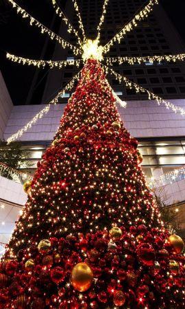 86587 скачать обои Праздники, Елка, Рождество, Праздник, Игрушки, Торговый Центр, Зал - заставки и картинки бесплатно