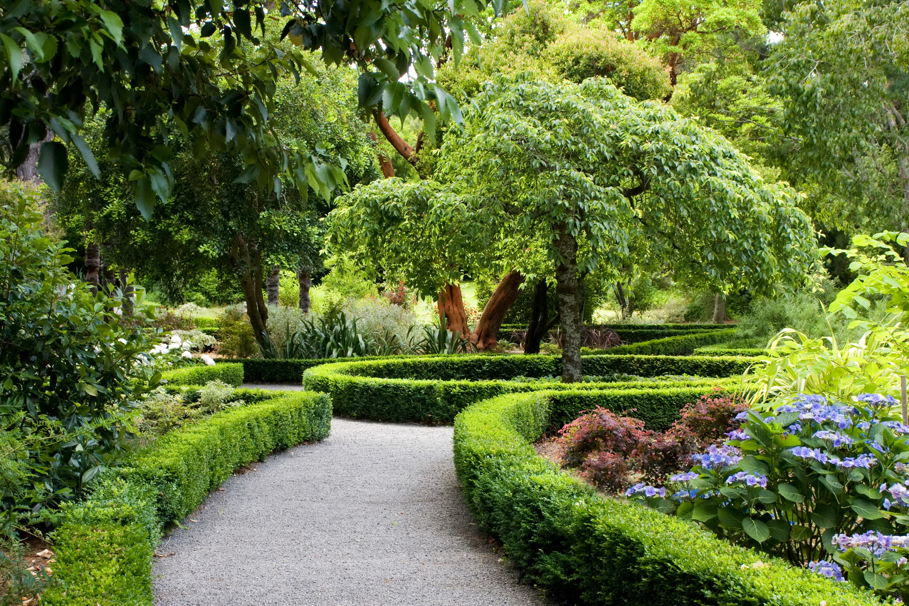 116034 download wallpaper Park, New Zealand, Landscape, Christchurch, Design, Nature, Bush screensavers and pictures for free