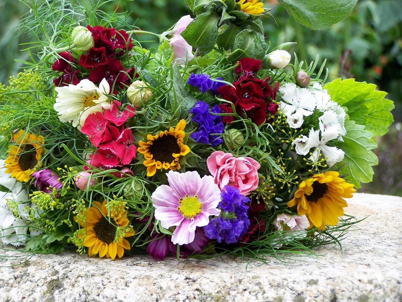 30709 télécharger le fond d'écran Plantes, Fleurs, Bouquets - économiseurs d'écran et images gratuitement