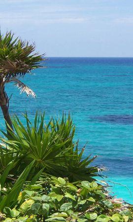 148827 descargar fondo de pantalla Naturaleza, Plantas, Zona Tropical, Trópico, Orilla, Banco, La Bahía, Bahía, Oceano, Océano: protectores de pantalla e imágenes gratis