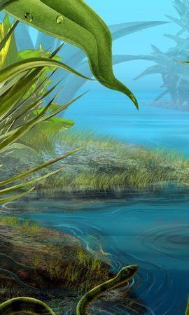 1310 скачать обои Растения, Пейзаж, Вода, Насекомые, Арт - заставки и картинки бесплатно
