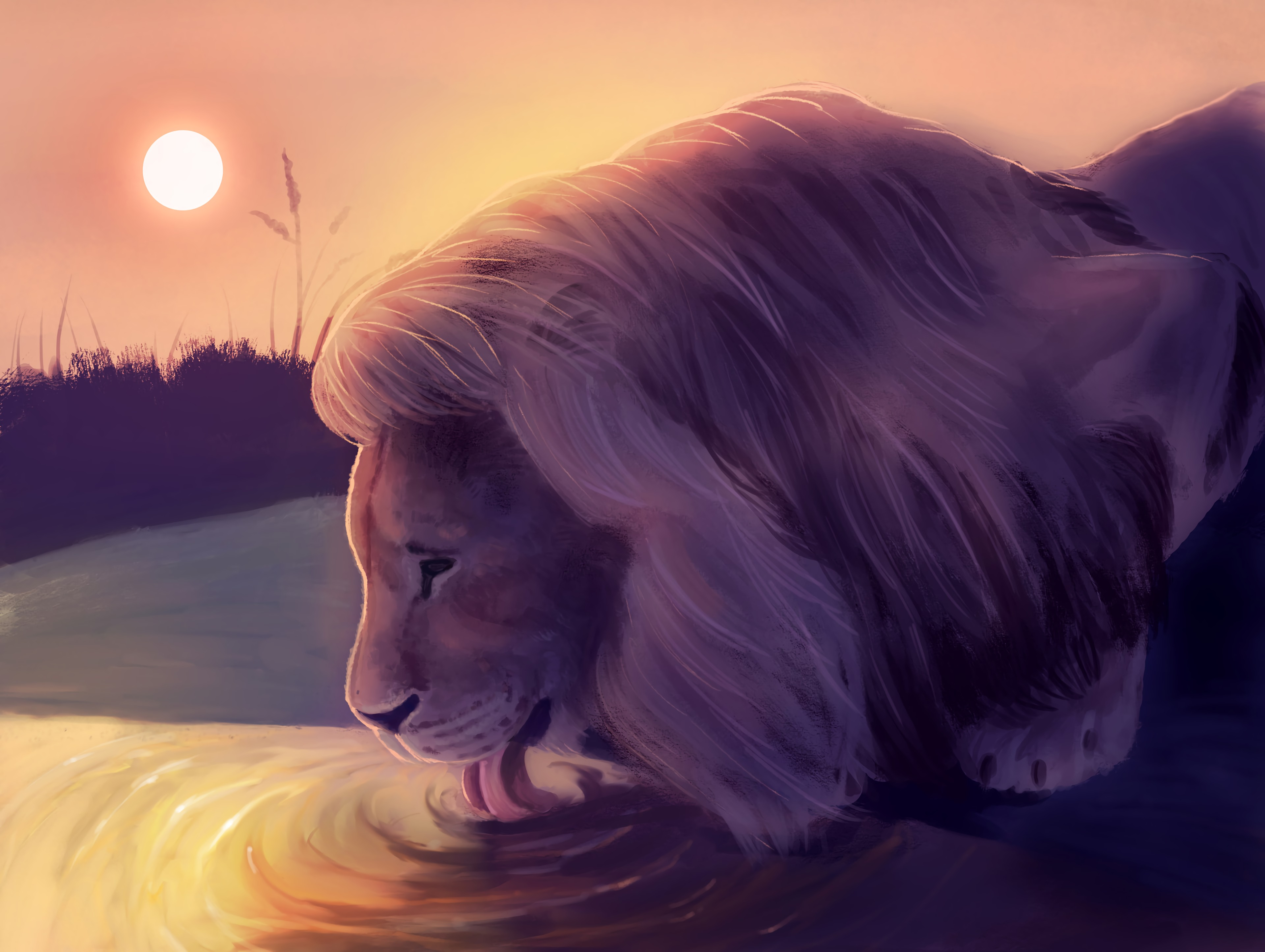 65591 download wallpaper Lion, Water, Protruding Tongue, Tongue Stuck Out, Art, Wildlife screensavers and pictures for free