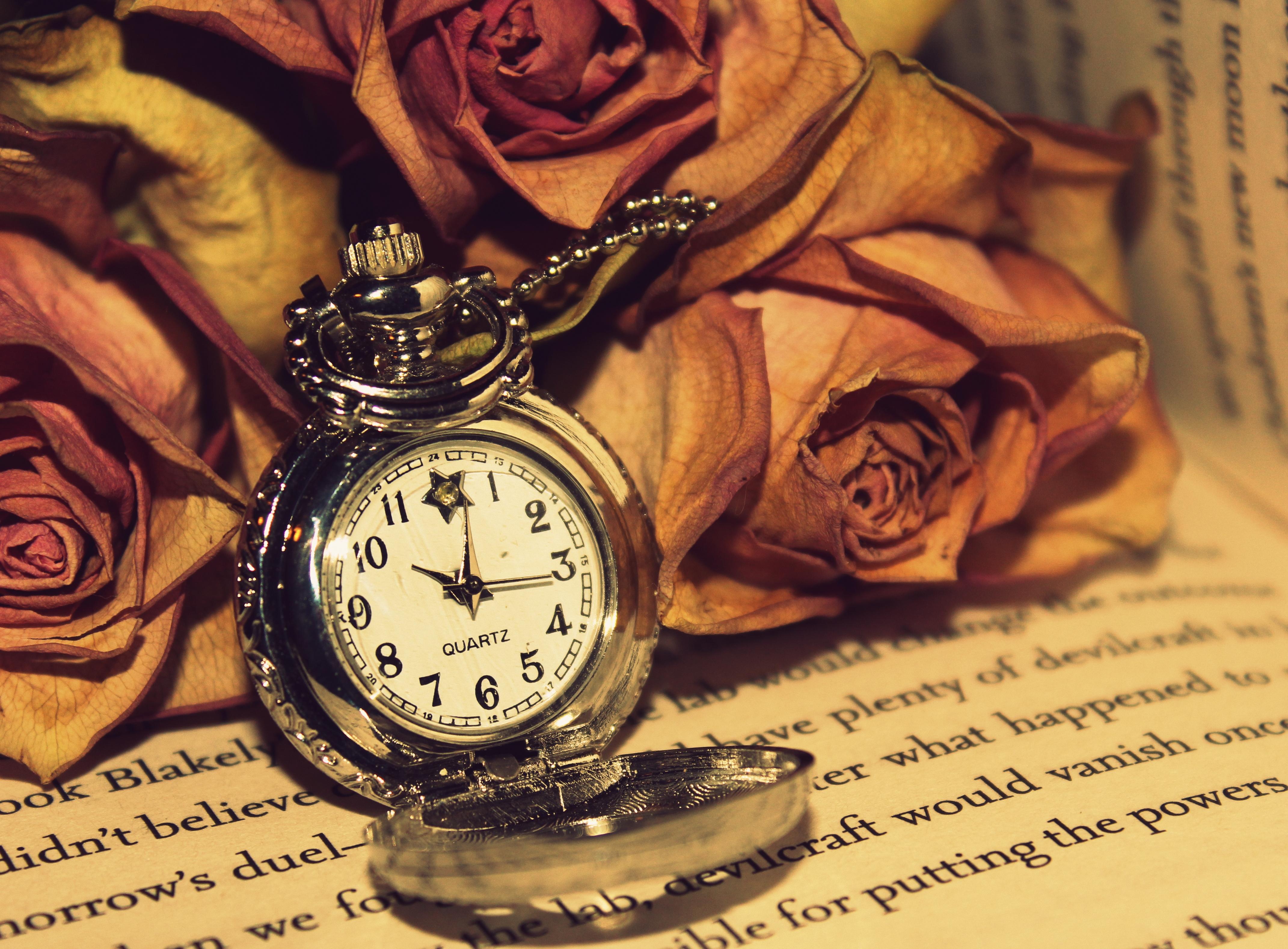 97952 Hintergrundbild herunterladen Roses, Big Ben, Verschiedenes, Sonstige, Lesen - Bildschirmschoner und Bilder kostenlos