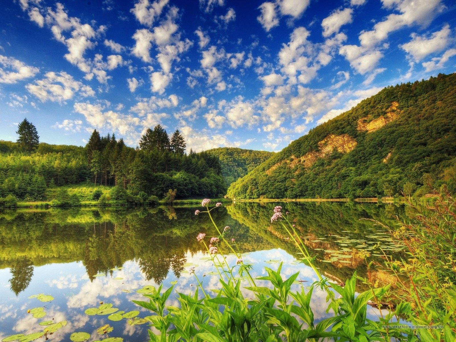 577 скачать обои Пейзаж, Вода, Деревья, Небо - заставки и картинки бесплатно