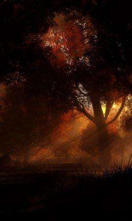 155436 Заставки и Обои Деревья на телефон. Скачать Темные, Деревья, Ночь, Осень картинки бесплатно