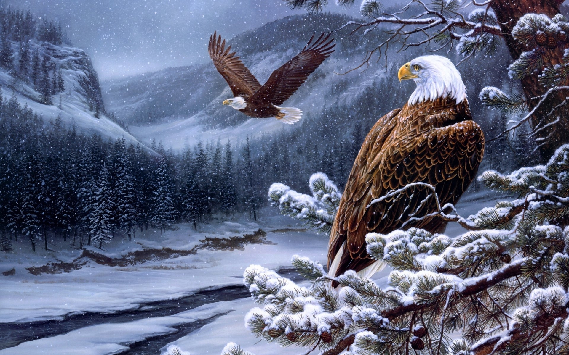 23695 download wallpaper Birds, Snow, Pictures, Eagles screensavers and pictures for free