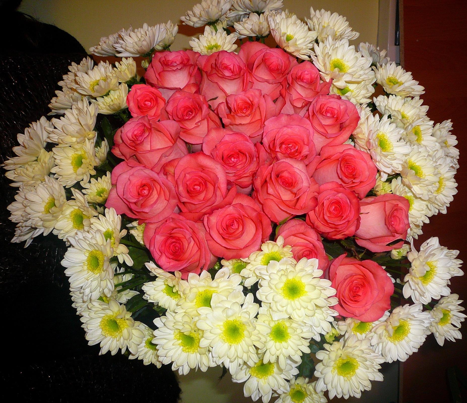 120038 скачать обои Хризантемы, Цветы, Розы, Букет - заставки и картинки бесплатно