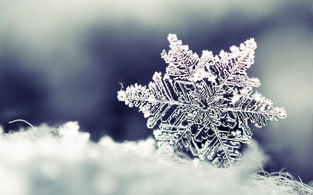 15328 download wallpaper Winter, Background, Snowflakes screensavers and pictures for free