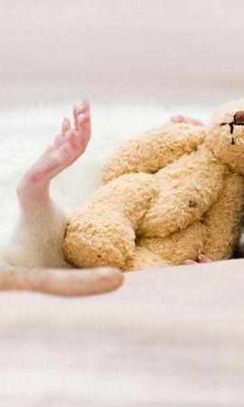 124009壁紙のダウンロード動物, ラット, 鼠, おもちゃ, 玩具, 睡眠, 夢, 齧歯類-スクリーンセーバーと写真を無料で
