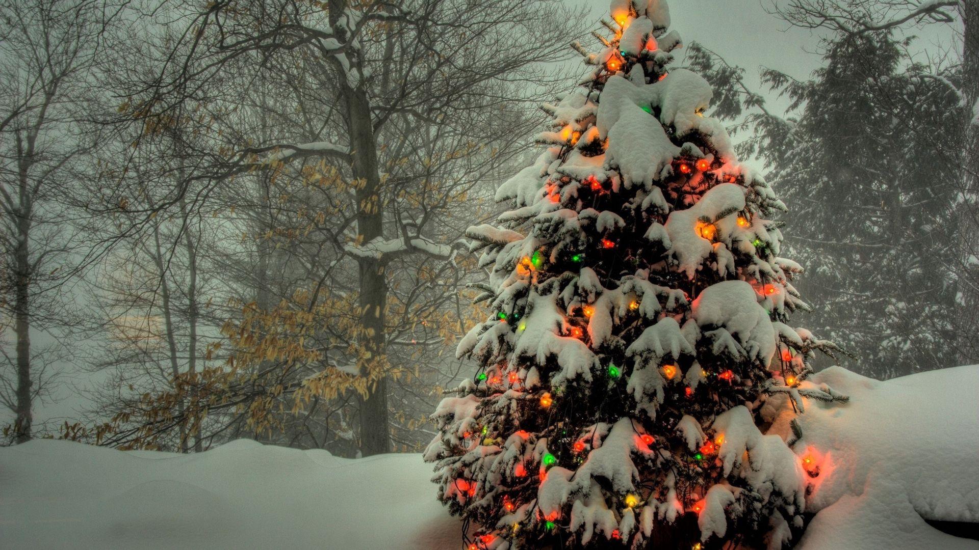 126507 Hintergrundbild herunterladen Feiertage, Spielzeug, Schnee, Scheinen, Licht, Weihnachtsbaum - Bildschirmschoner und Bilder kostenlos