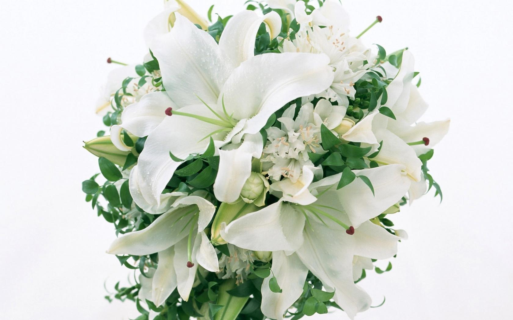 23266 télécharger le fond d'écran Plantes, Fleurs, Bouquets - économiseurs d'écran et images gratuitement