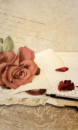 19975 baixar papel de parede Férias, Plantas, Flores, Rosas - protetores de tela e imagens gratuitamente