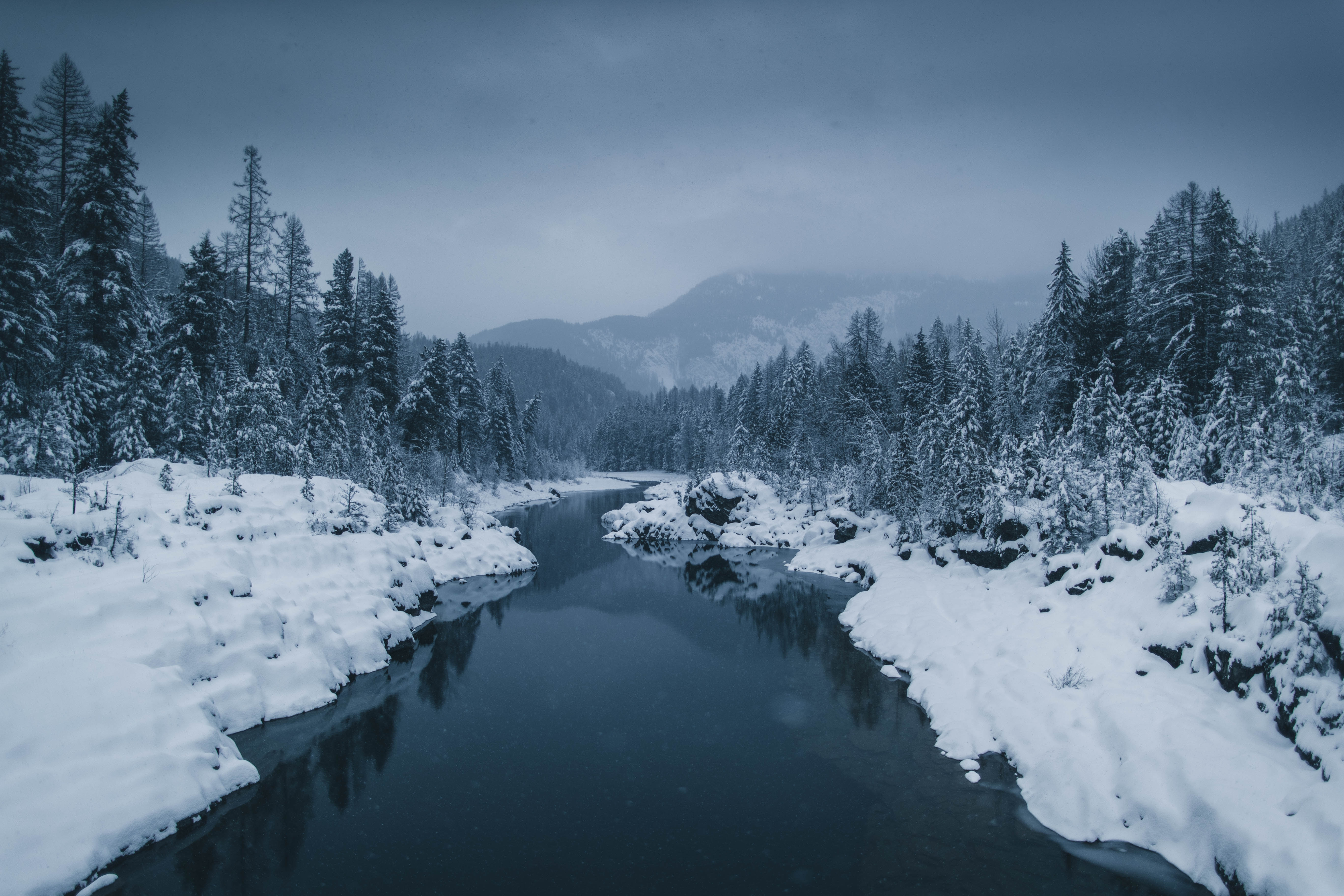 78533 free wallpaper 1080x2400 for phone, download images Winter, Nature, Rivers, Trees, Snow, Fog 1080x2400 for mobile