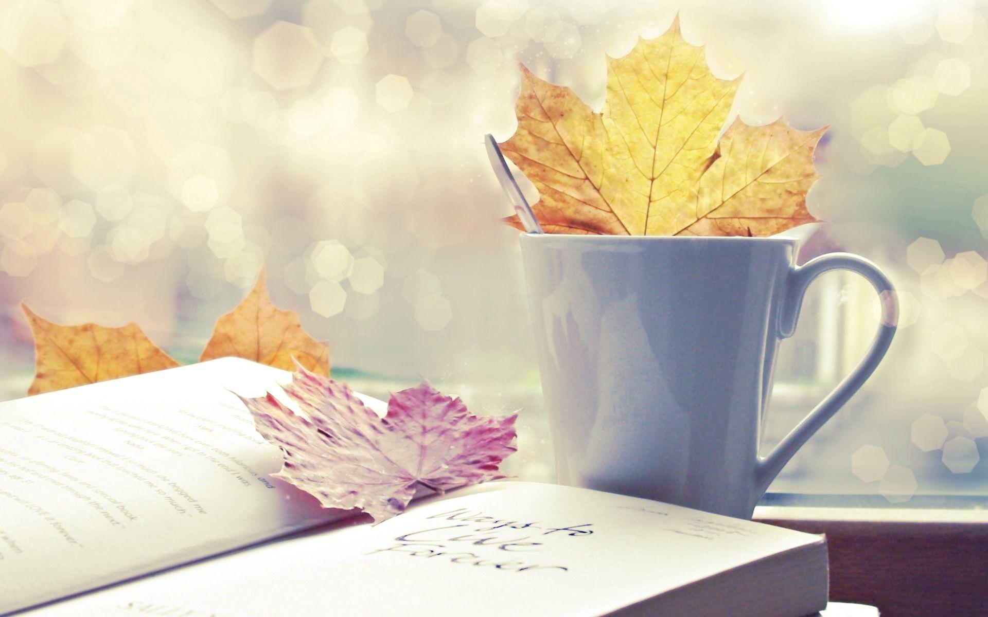 79308 скачать обои Природа, Лист, Чашка, Книга, Осень - заставки и картинки бесплатно