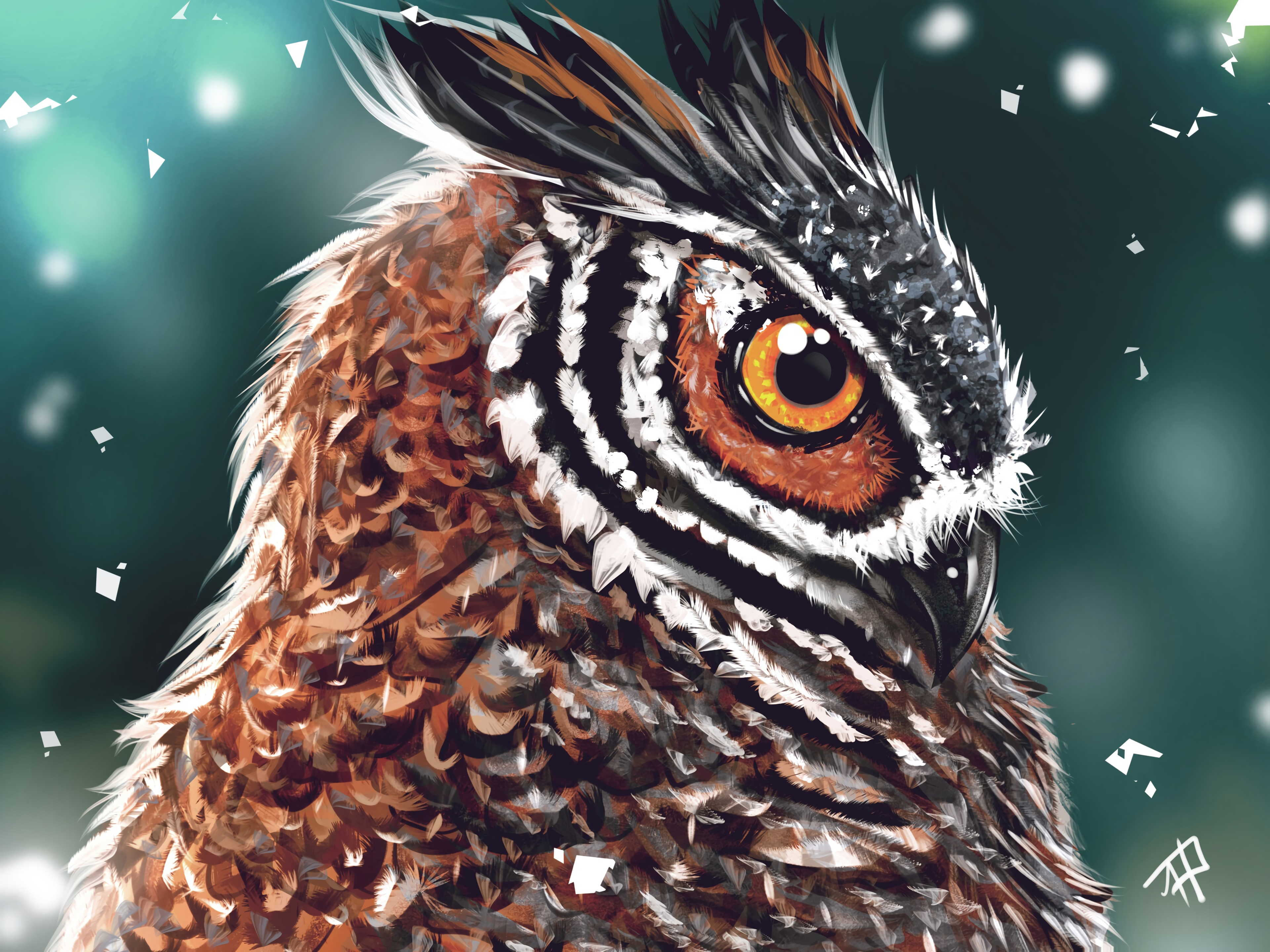 113992 Screensavers and Wallpapers Art for phone. Download Art, Owl, Bird, Beak, Head, Eye pictures for free