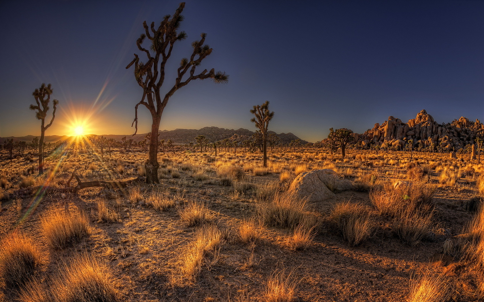 28552 download wallpaper Landscape, Sunset, Desert screensavers and pictures for free