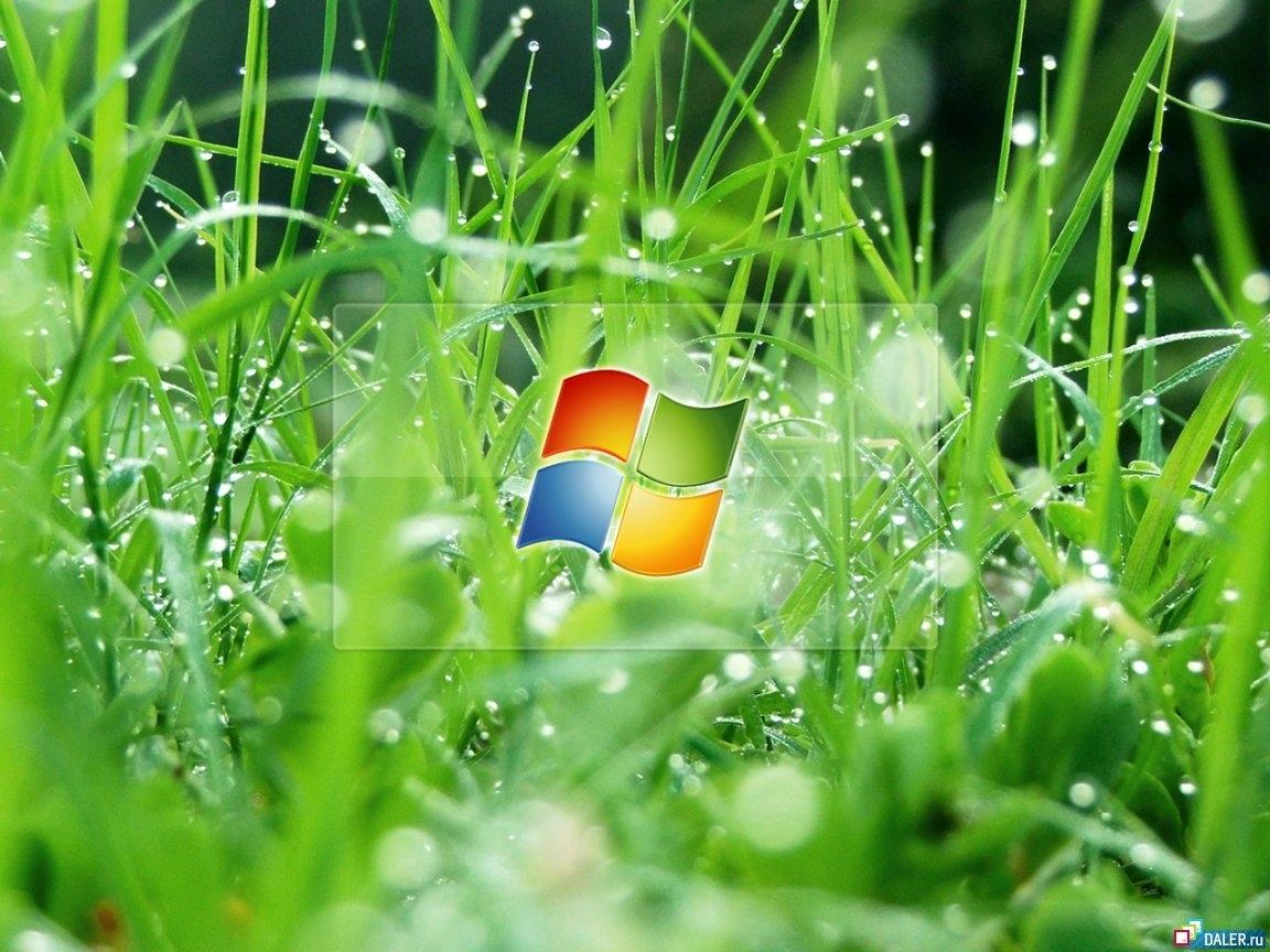3586 Заставки и Обои Бренды на телефон. Скачать Бренды, Трава, Логотипы, Микрософт (Microsoft) картинки бесплатно