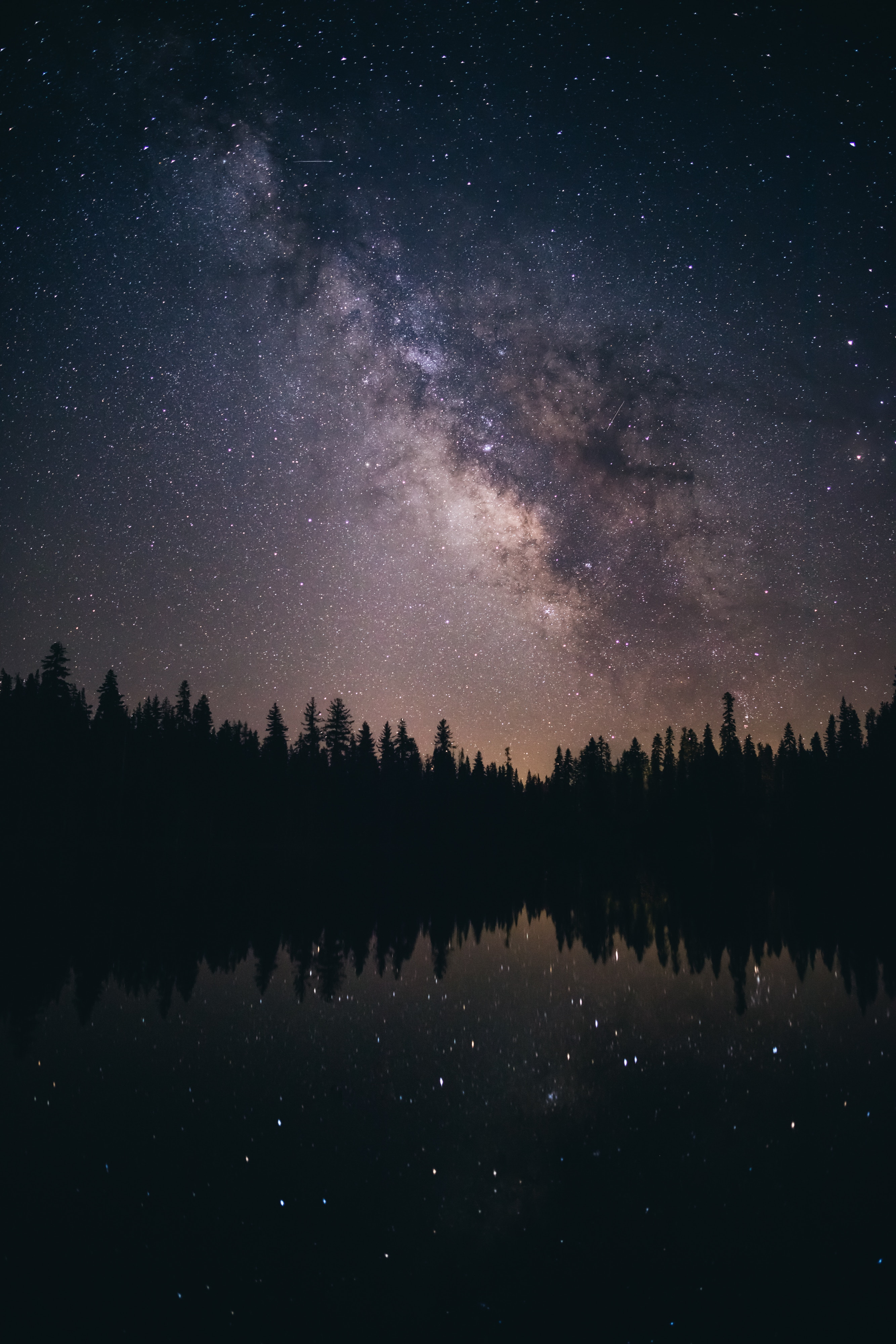 136697 download wallpaper Starry Sky, Dark, Trees, Stars, Night, Milky Way screensavers and pictures for free
