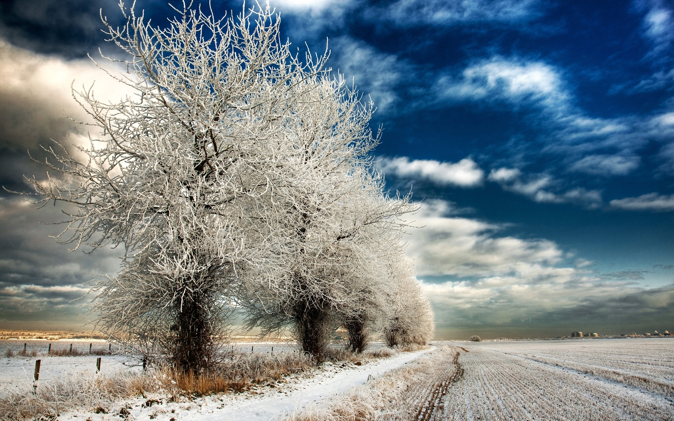 46209 download wallpaper Landscape, Winter, Nature, Sky screensavers and pictures for free