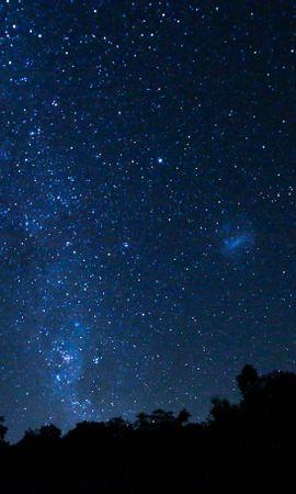 156089 скачать обои Темные, Космос, Звездное Небо, Деревья, Звезды - заставки и картинки бесплатно