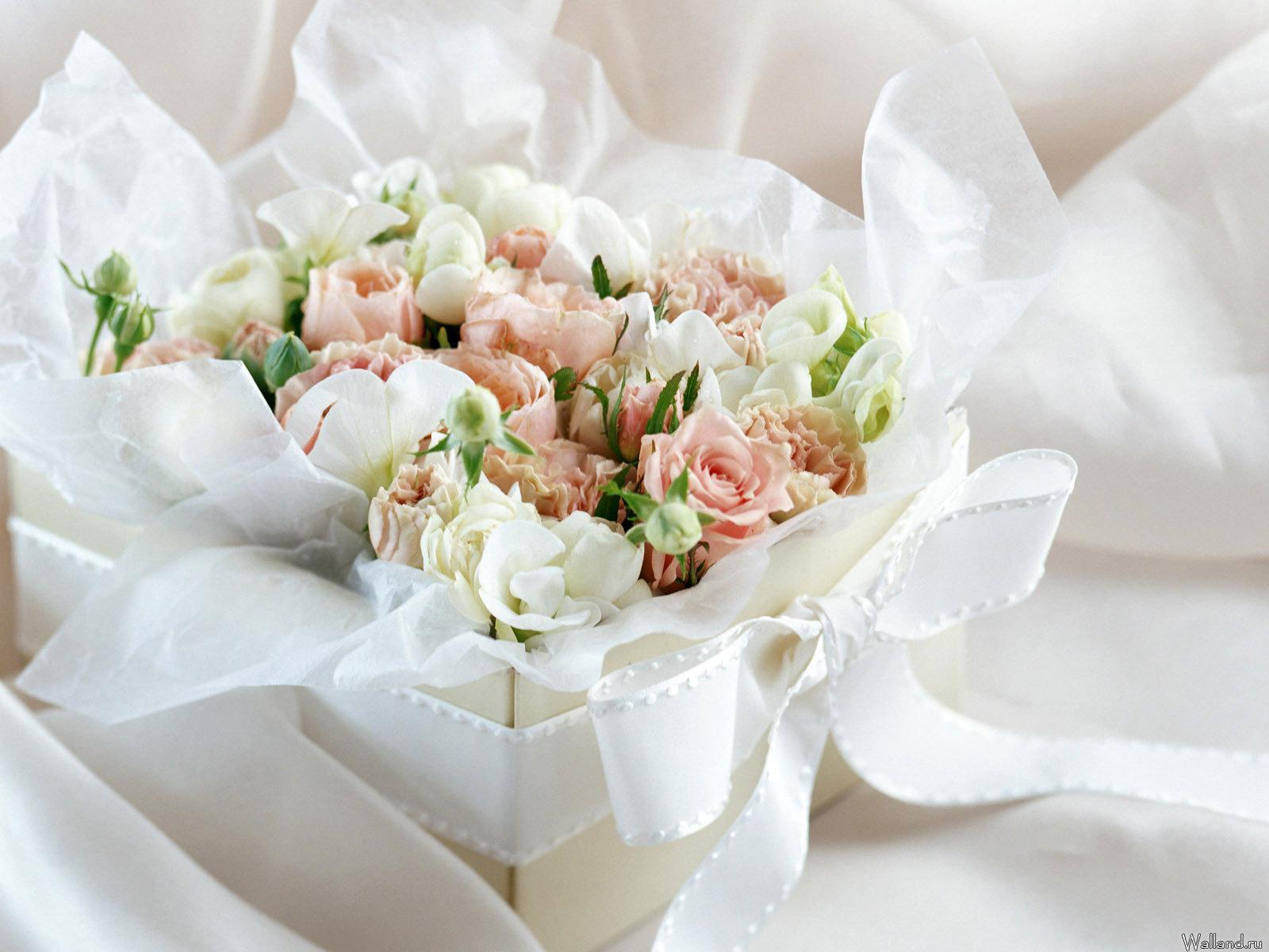 20975 télécharger le fond d'écran Plantes, Fleurs, Roses, Bouquets - économiseurs d'écran et images gratuitement