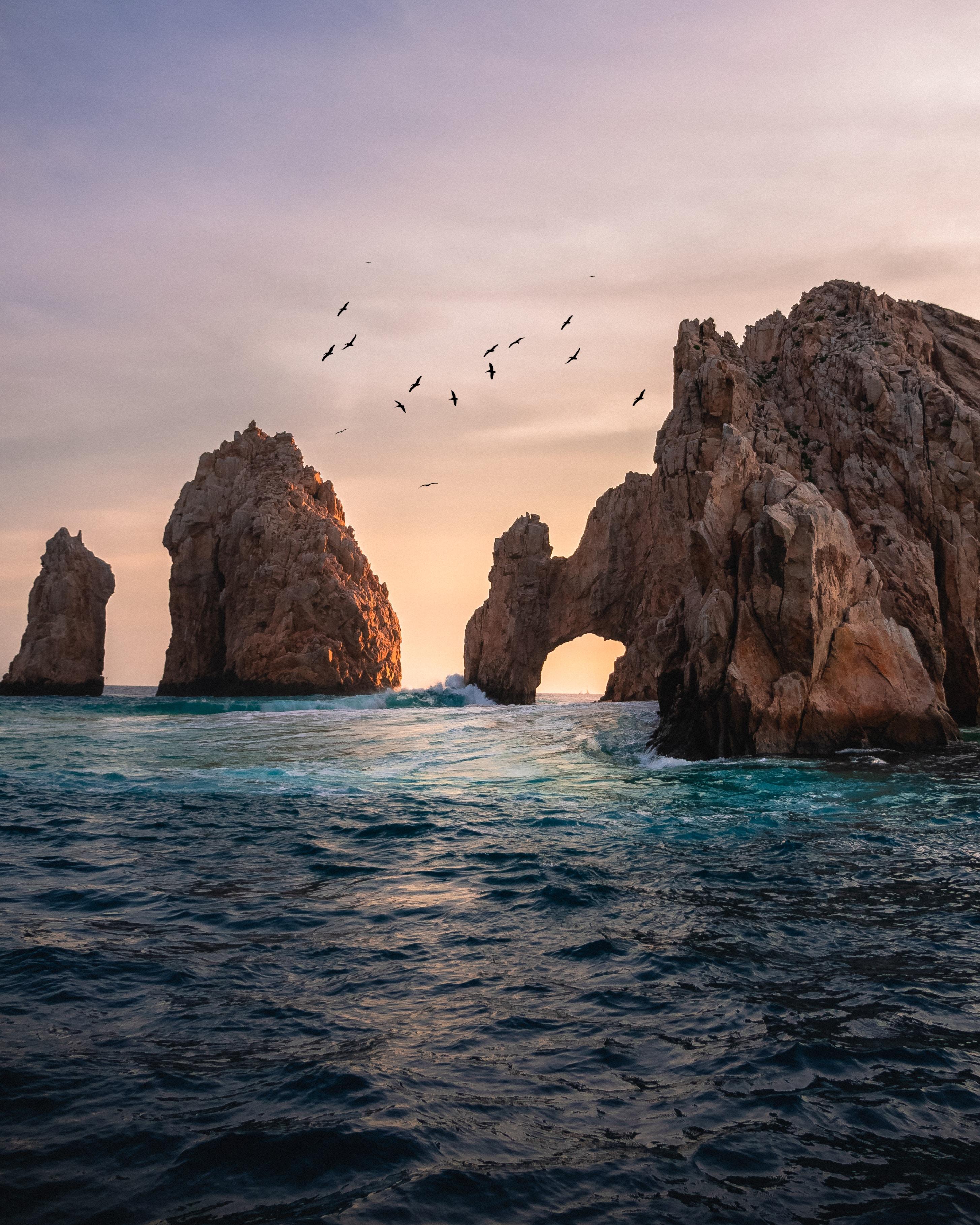 64959 скачать обои Волны, Скалы, Вода, Море, Природа, Птицы - заставки и картинки бесплатно