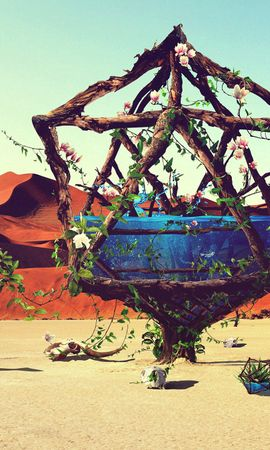 134040 Заставки и Обои Пустыня на телефон. Скачать Арт, Джастин Маллер, Креатив, Зебры, Вода, Птица, Пустыня картинки бесплатно