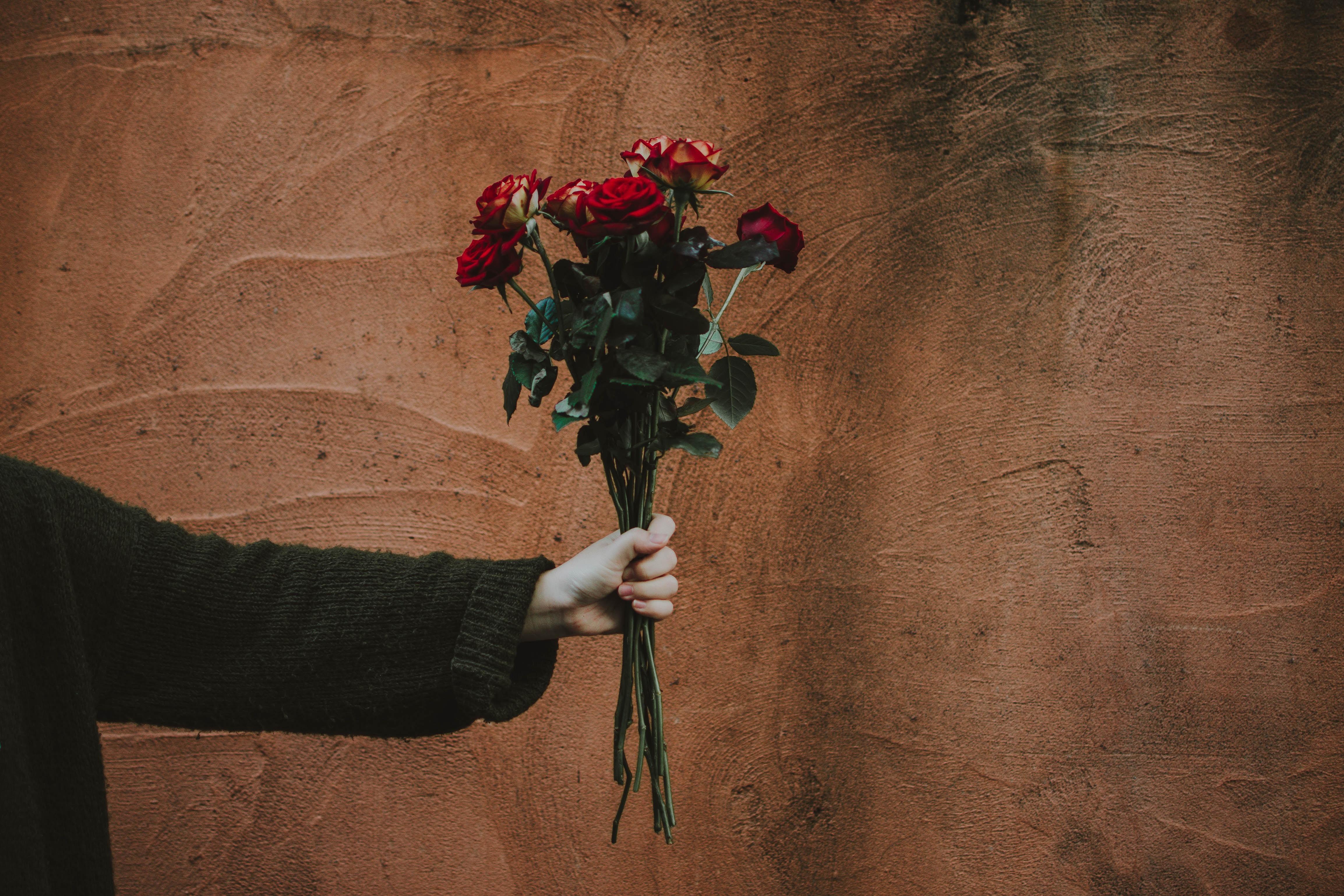56635 скачать обои Цветы, Букет, Рука, Стена, Розы - заставки и картинки бесплатно