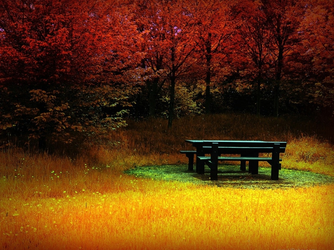 42071 download wallpaper Landscape, Autumn, Objects screensavers and pictures for free
