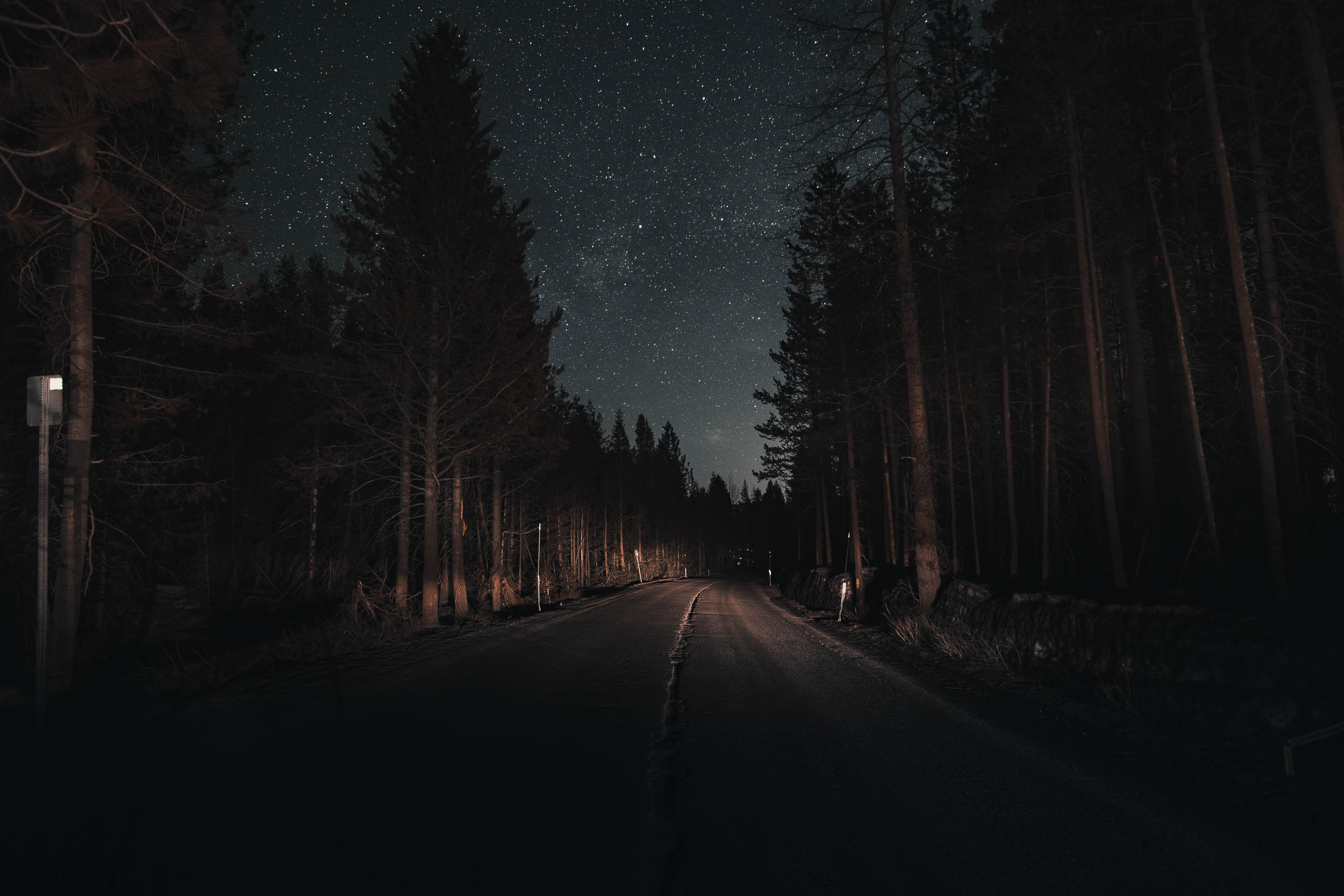 154859 fond d'écran 1080x2400 sur votre téléphone gratuitement, téléchargez des images Nature, Nuit, Route, Tour, Tourner, Forêt, Ciel Étoilé 1080x2400 sur votre mobile