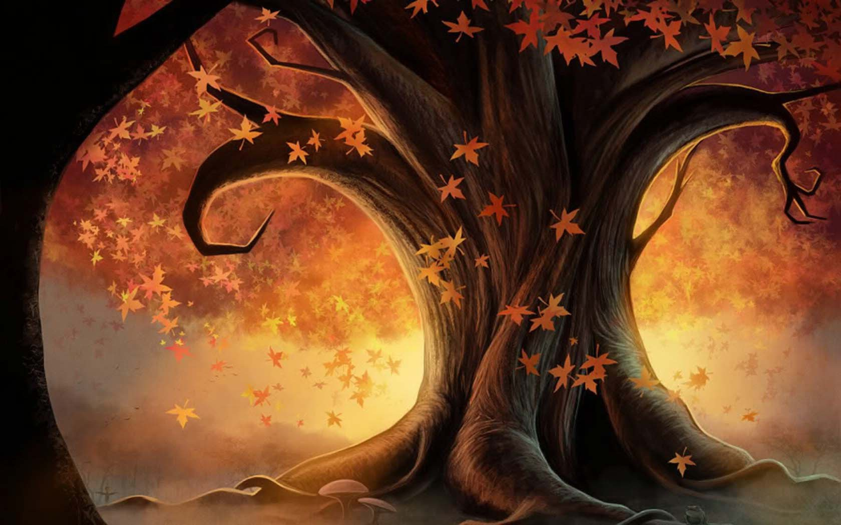 20632 download wallpaper Pictures, Plants, Trees, Autumn, Leaves screensavers and pictures for free