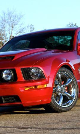 48391 скачать обои Транспорт, Машины, Форд (Ford), Мустанг (Mustang) - заставки и картинки бесплатно