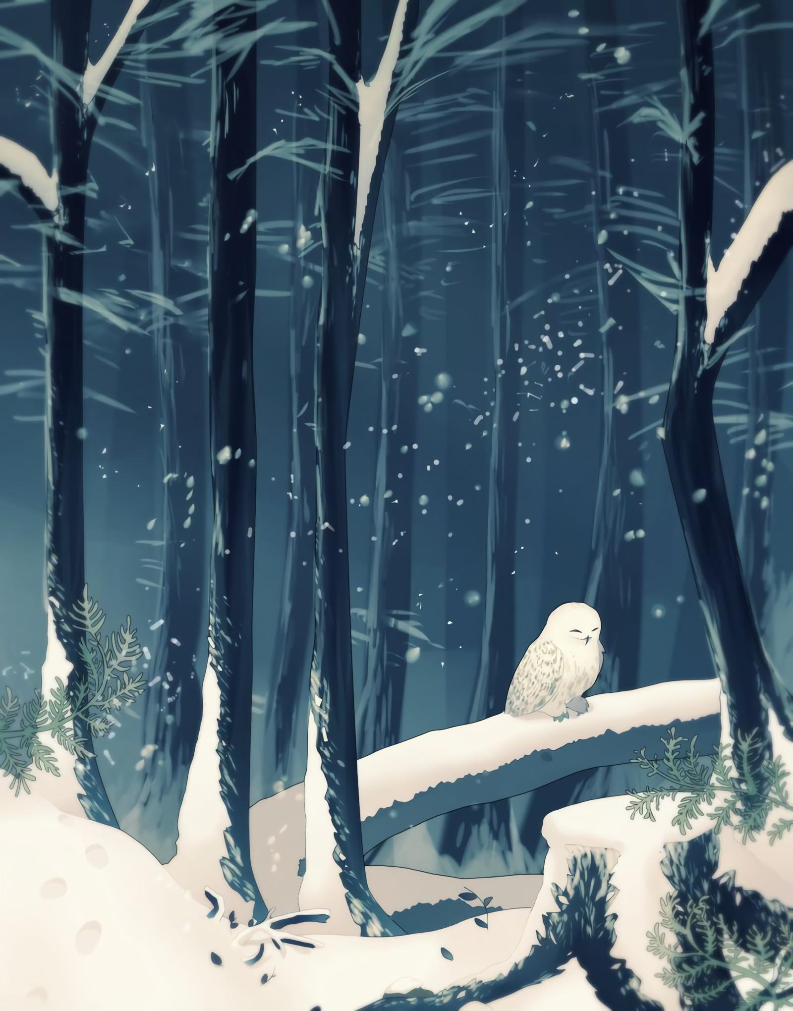 117396 скачать обои Лес, Сова, Арт, Снег, Зима - заставки и картинки бесплатно