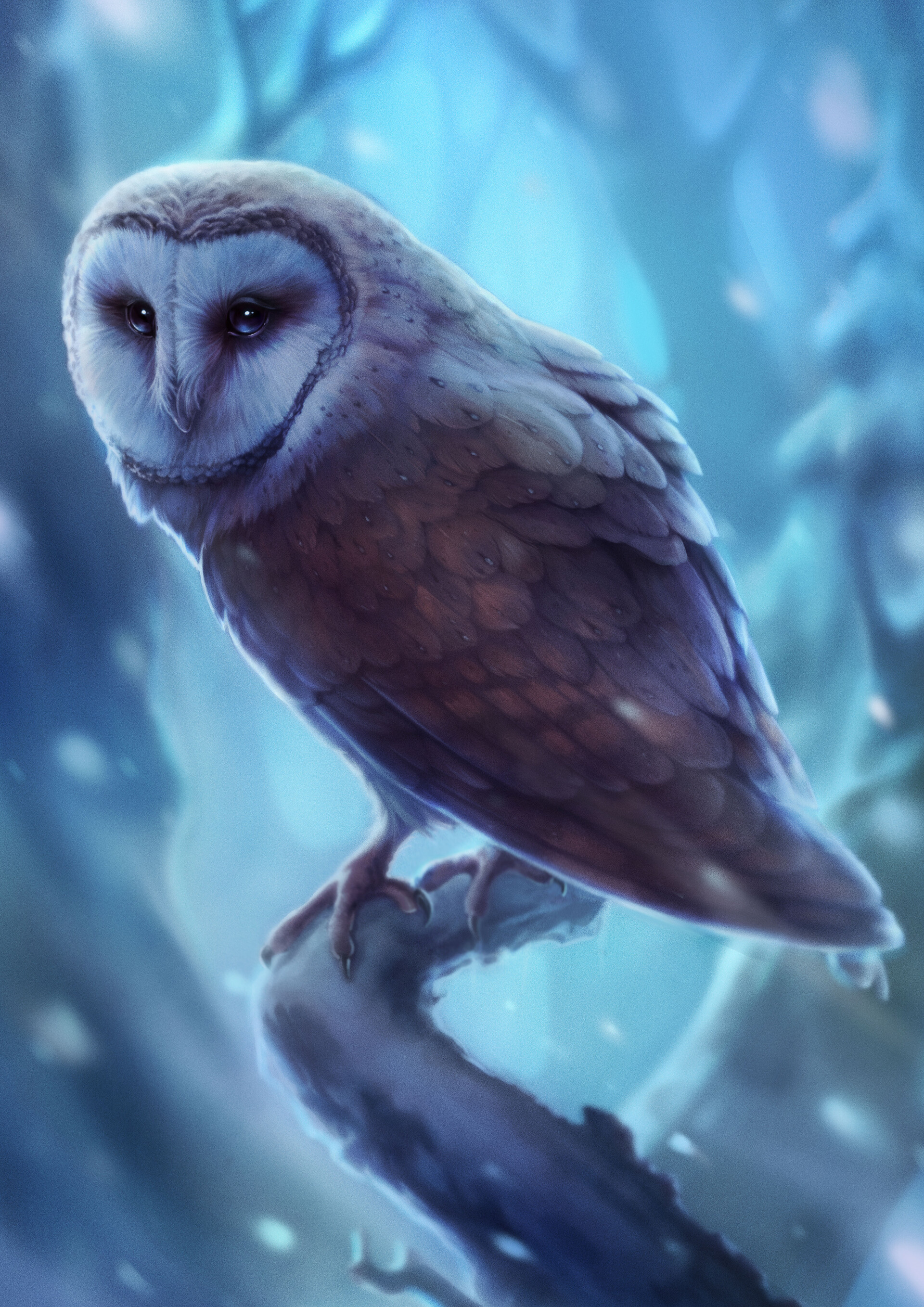 113497 Screensavers and Wallpapers Owl for phone. Download Owl, Bird, Art, Sight, Opinion, Predator pictures for free