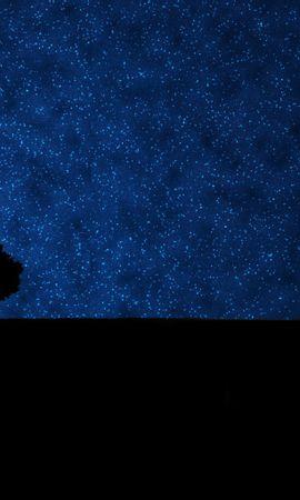 18994 скачать обои Деревья, Фон, Небо, Звезды, Ночь - заставки и картинки бесплатно