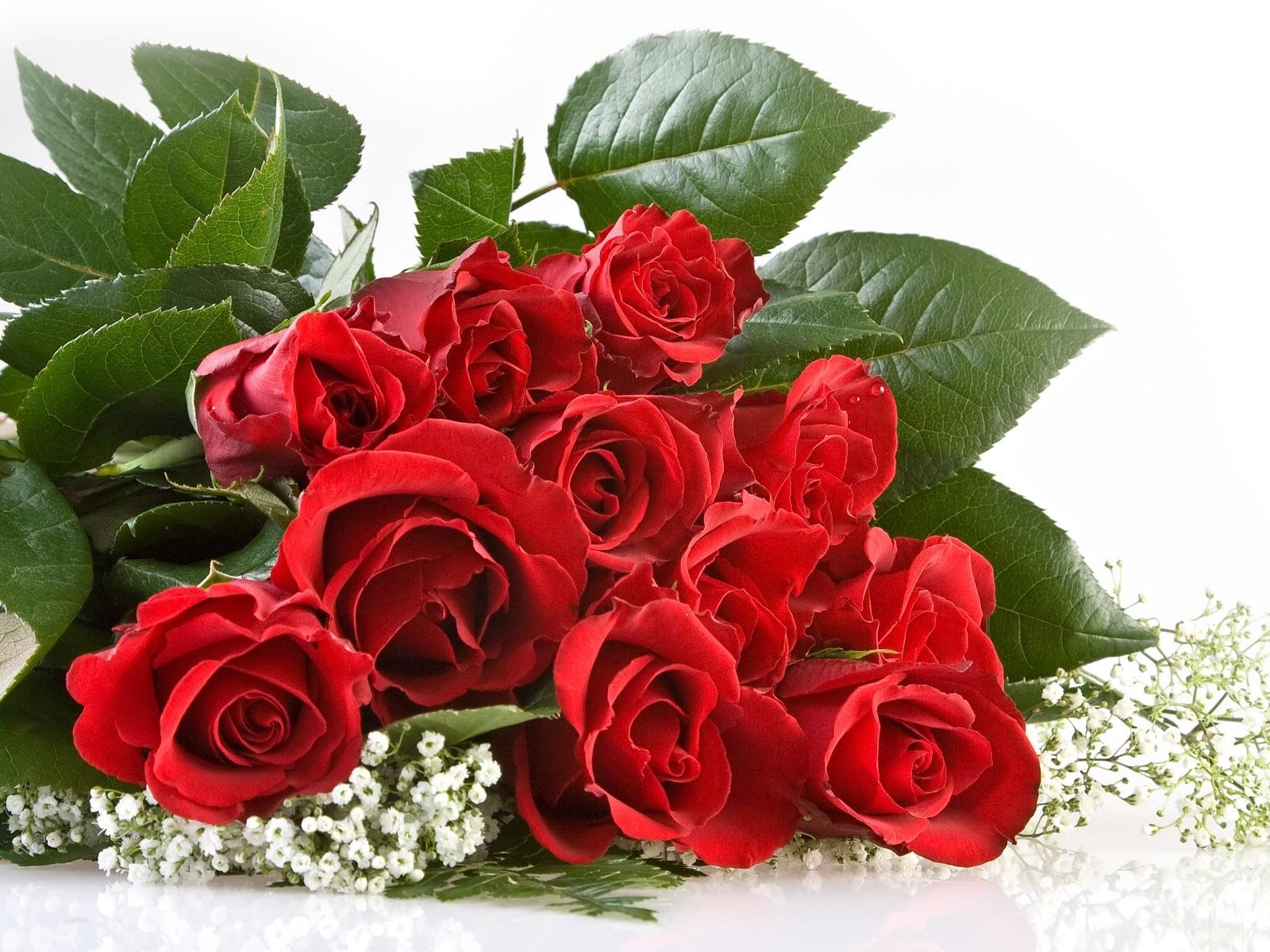 20505 Hintergrundbild herunterladen Blumen, Feiertage, Pflanzen, Roses, Bouquets - Bildschirmschoner und Bilder kostenlos