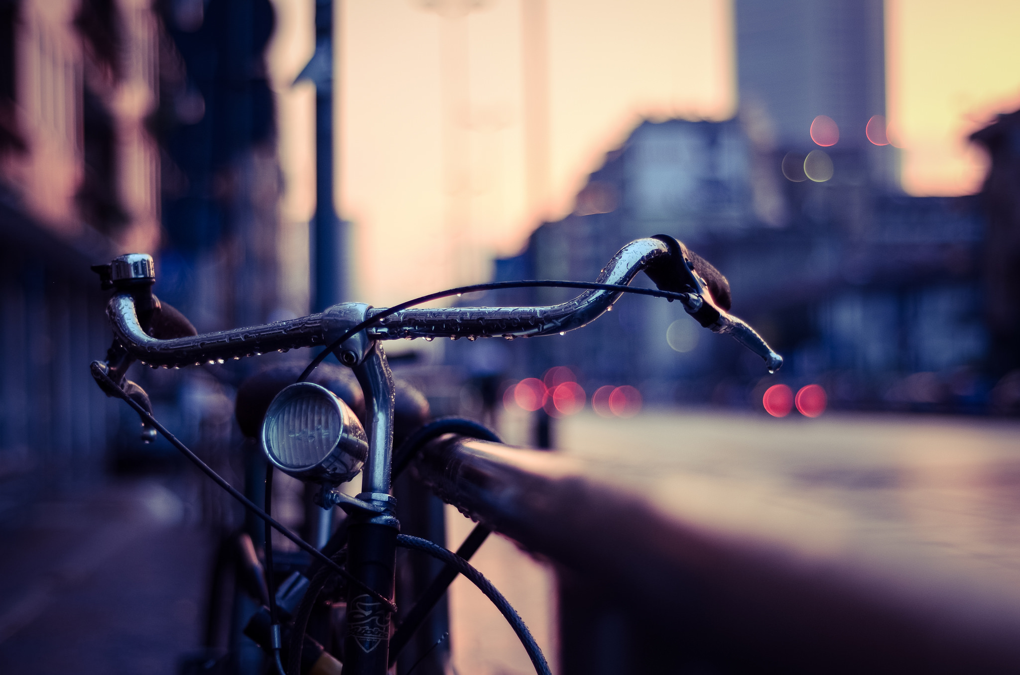 53701 Screensavers and Wallpapers Macro for phone. Download Drops, Macro, Blur, Smooth, Steering Wheel, Rudder, Bicycle pictures for free