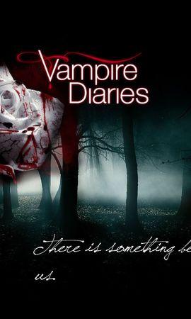 15443 télécharger le fond d'écran Cinéma, Vampire Diaries - économiseurs d'écran et images gratuitement