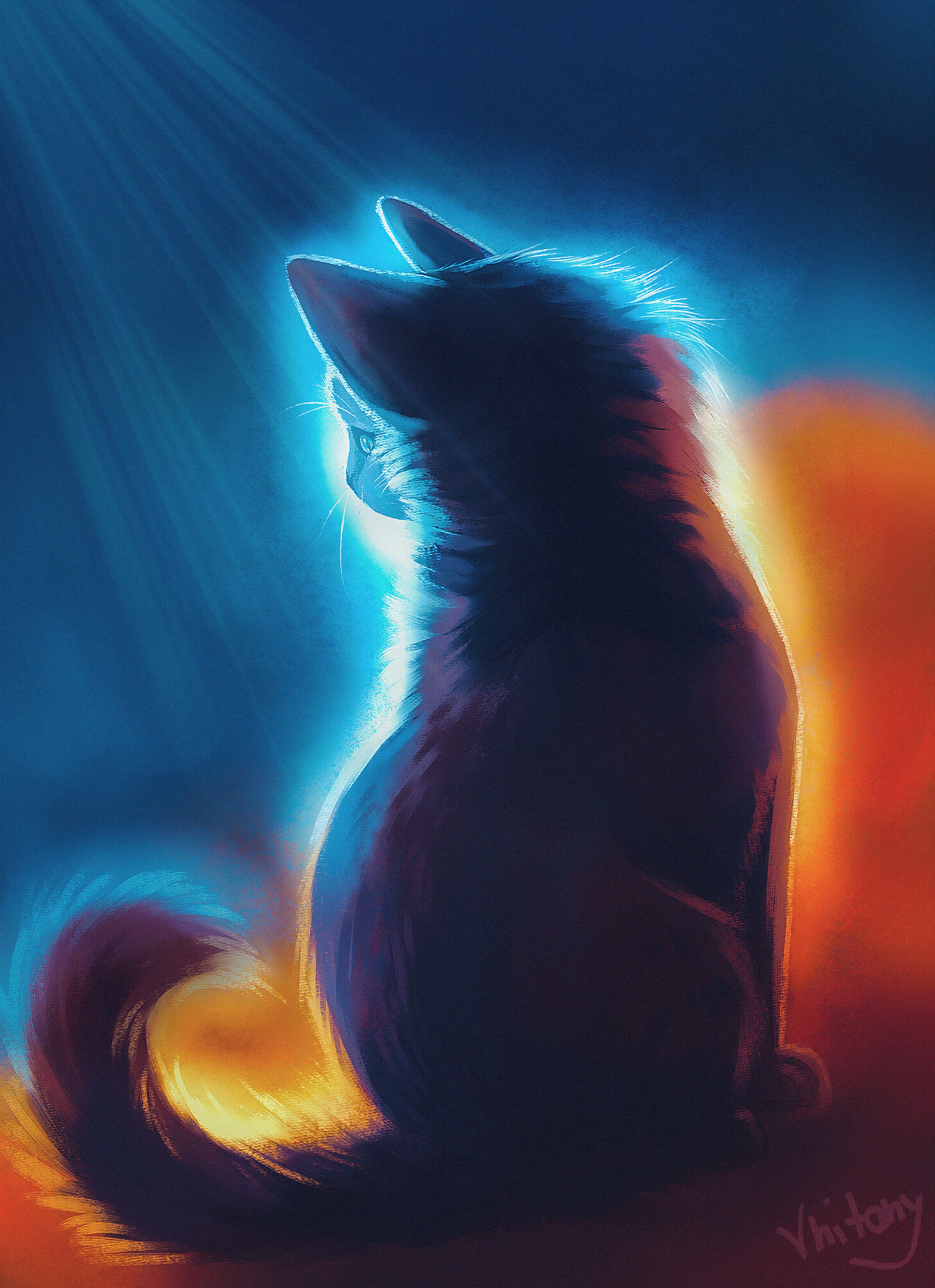 92111 download wallpaper Cat, Art, Shine, Light, Beams, Rays, Glow screensavers and pictures for free
