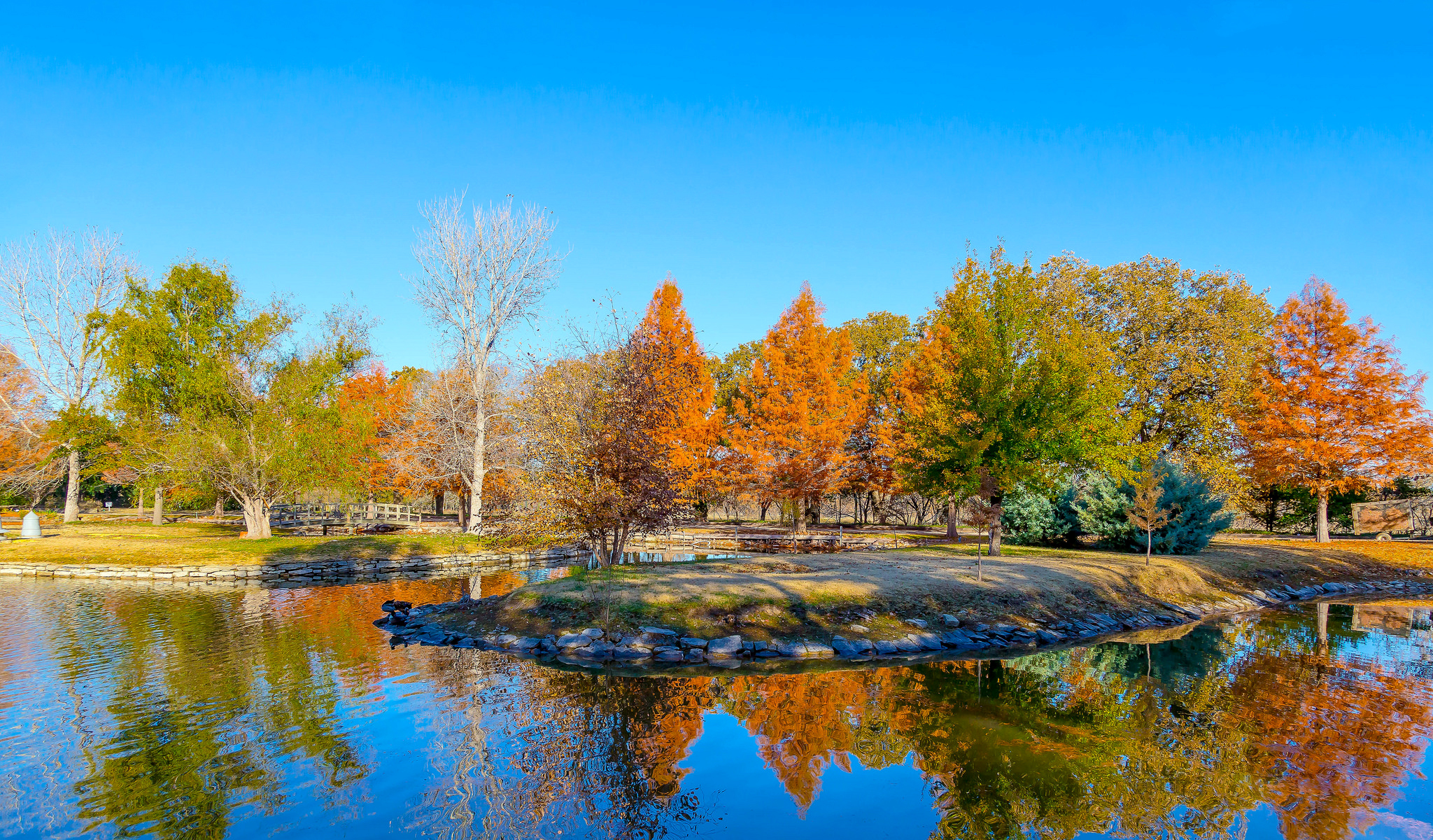 123576 free wallpaper 240x320 for phone, download images Nature, Autumn, Usa, United States, Pond, Texas, Botanic Park, Botanical Park 240x320 for mobile