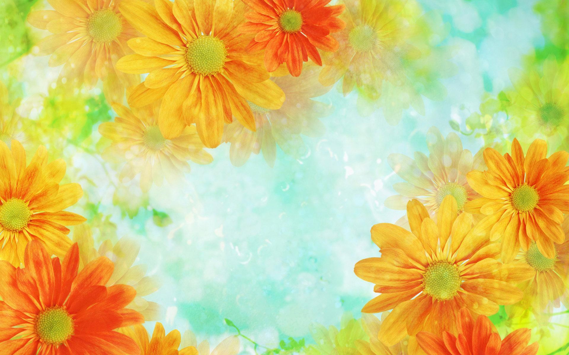 10657 descargar fondo de pantalla Plantas, Flores: protectores de pantalla e imágenes gratis