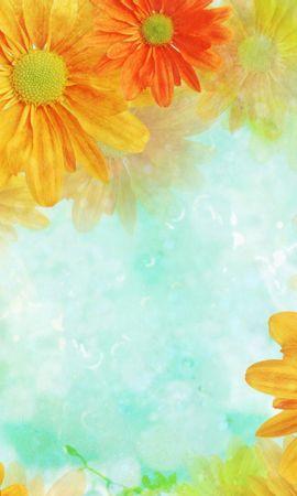 10657 скачать обои Растения, Цветы - заставки и картинки бесплатно